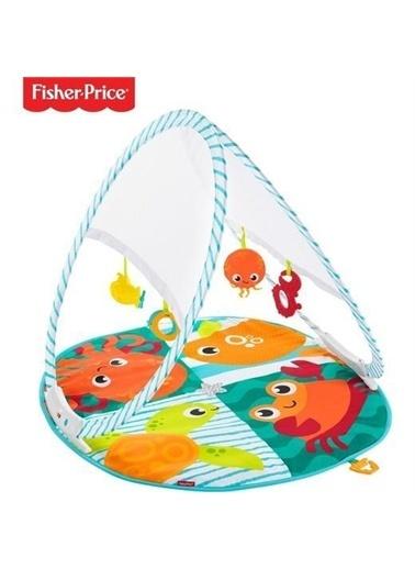Fisher Price Fisher Price Renkli Dostlar Jimnastik Fxc15 Renkli